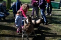 Der Tierpark Gettorf hatte wieder eine Gesandtschaft aus dem Streichelgehege mitgebracht